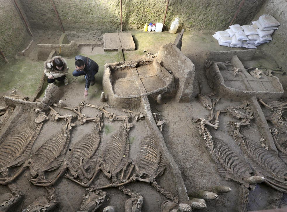 The tomb of a Luhun nobleman and his family also contained the skeletons of 13 horses and six chariots