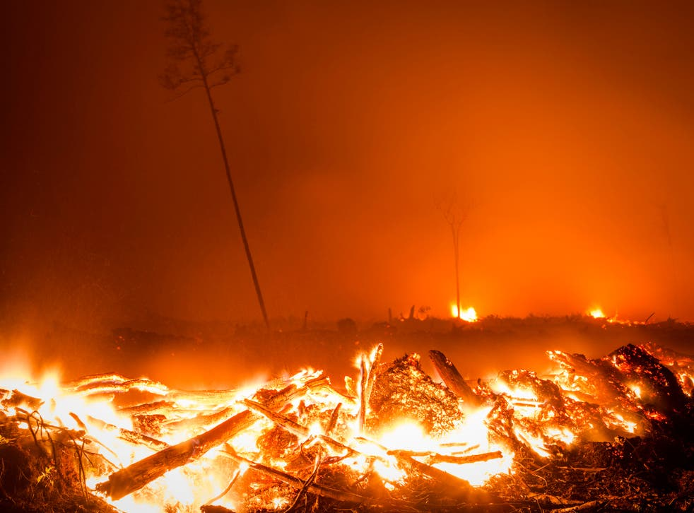 Peatland forest is cleared by burning for a palm oil plantation in Indonesia, causing severe pollution across the region