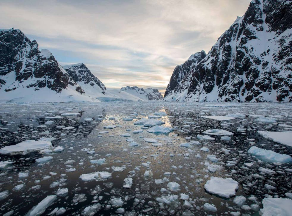 The splendour and dynamics of this ice-clad wilderness