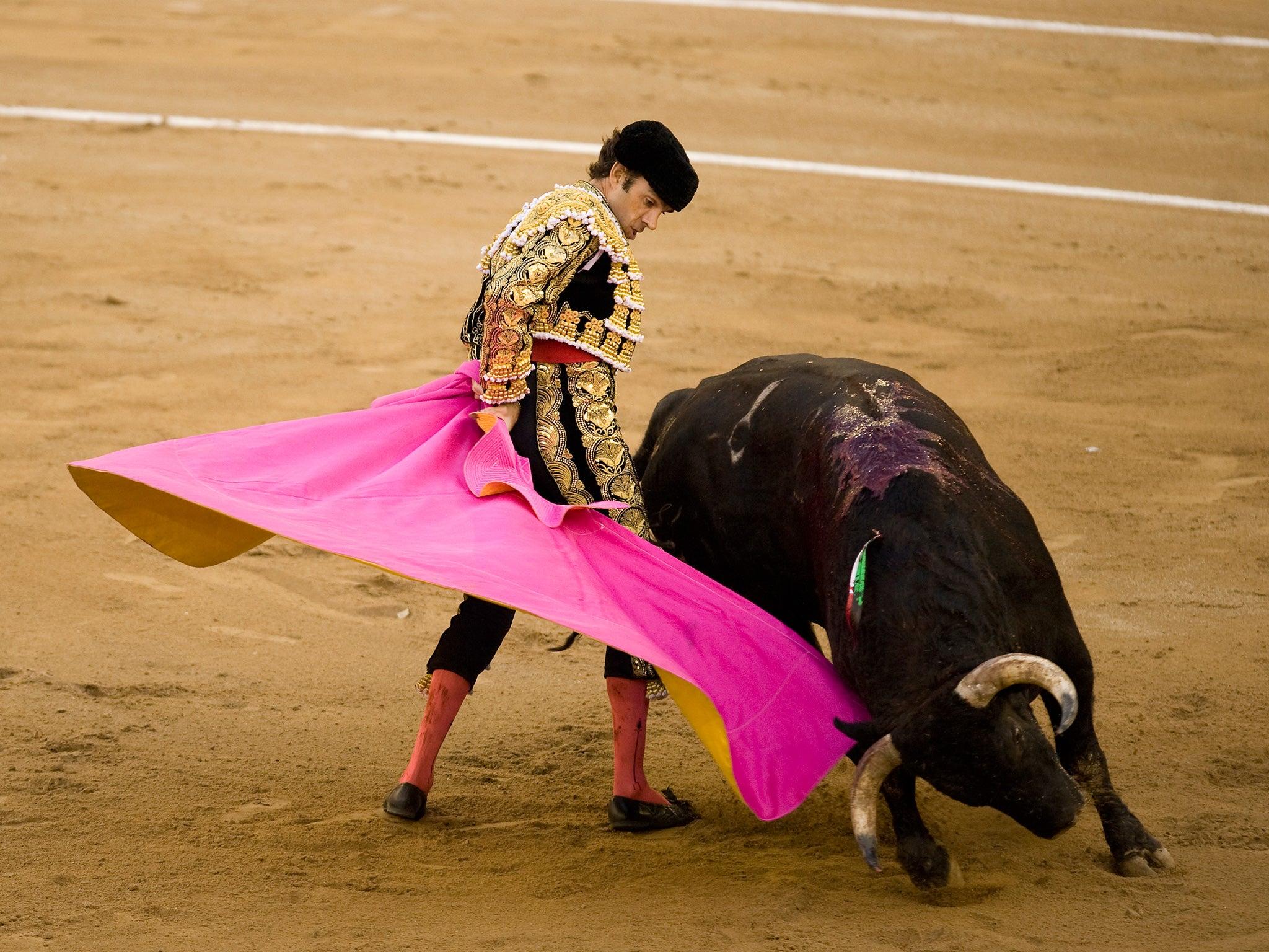 Bullfighting Gone Wrong HD Wallpaper Background