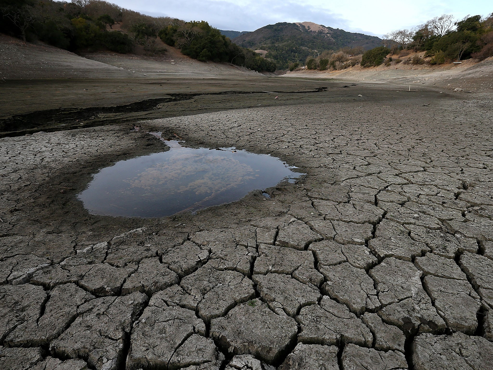 Climate change world faces food shortages and mass migration caused by global warming the independent