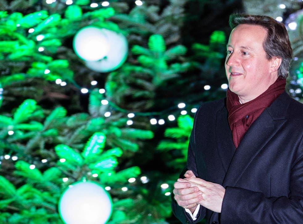 David Cameron at the lighting of Downing Street's Christmas tree