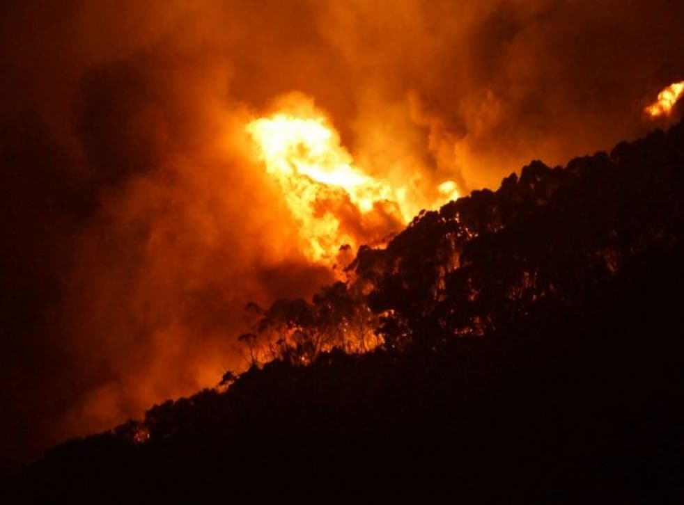 A photo released by the Country Fire Authority (CFA) on December 26 shows an out-of-control bushfire near Victoria's Great Ocean Road on Christmas Day