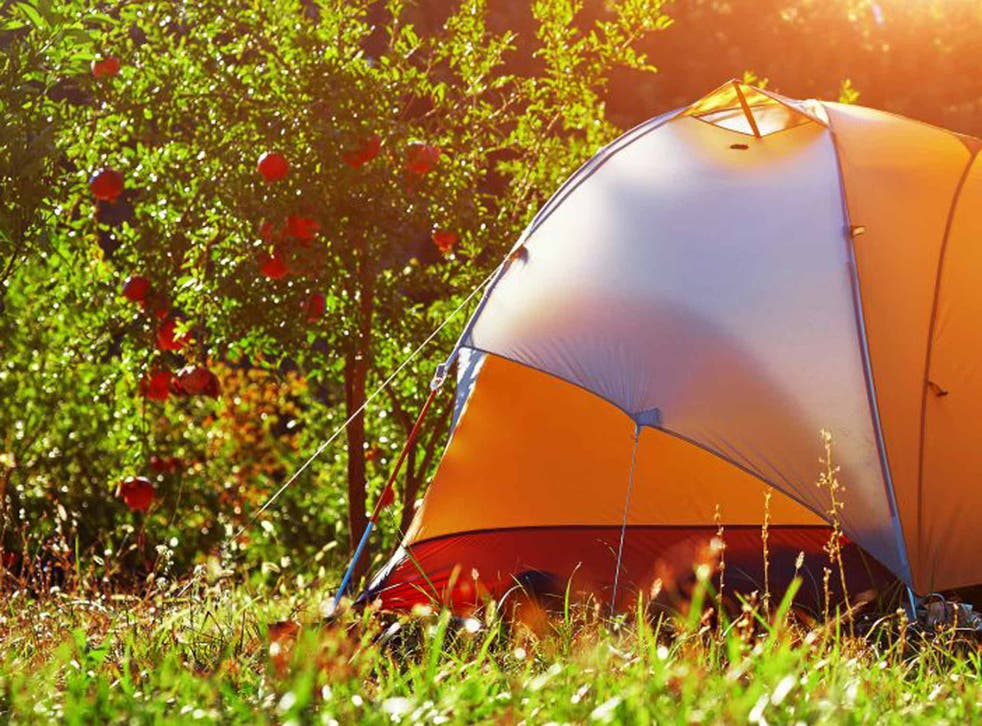 Pitch in: garden camping