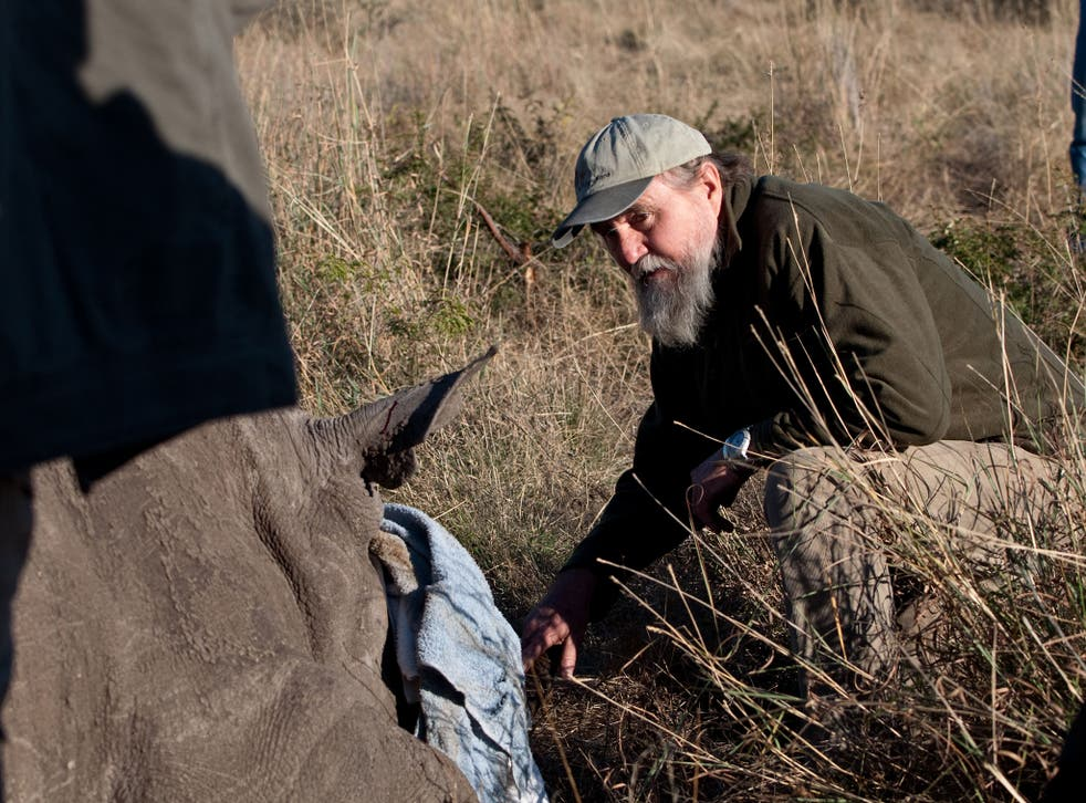 Map Ives, the country's national rhino coordinator, oversees the relocation of a sedated rhino