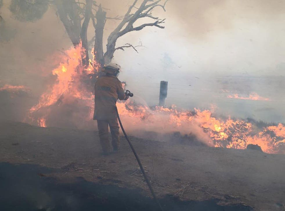 A firefighter works on putting out flames in Yarloop, Western Australia