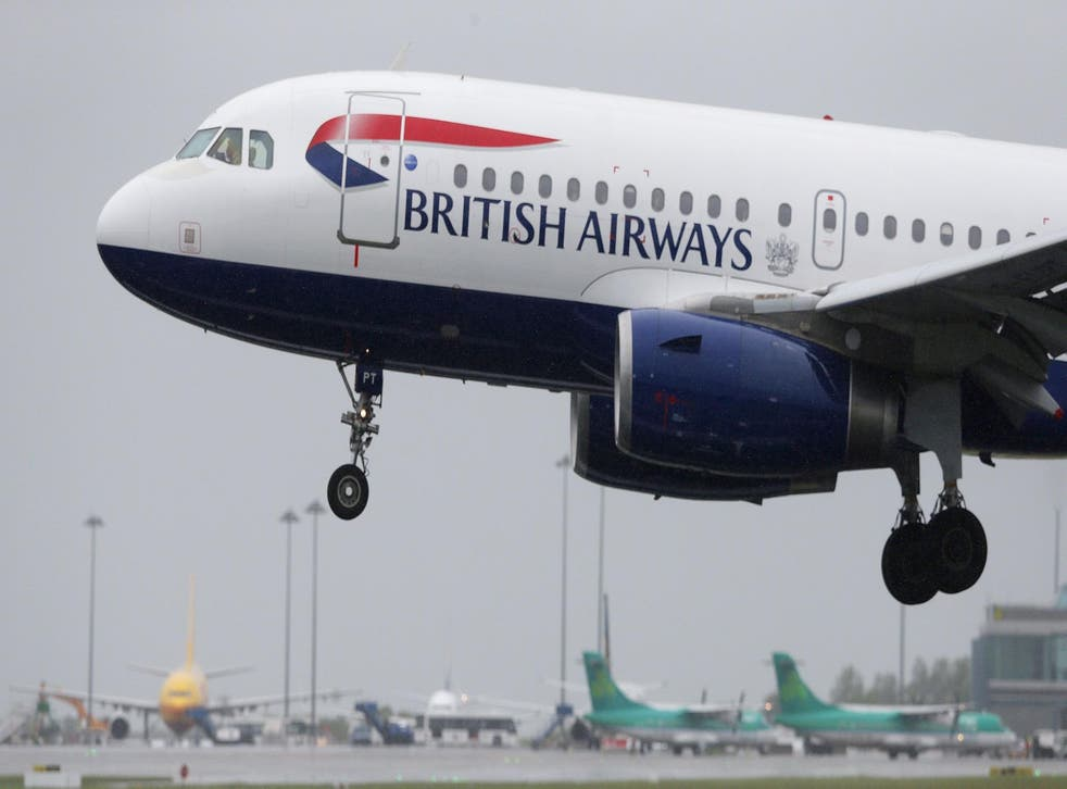 British Airways said the Airbus A320 was examined by engineers and cleared to take off for its next flight following the incident