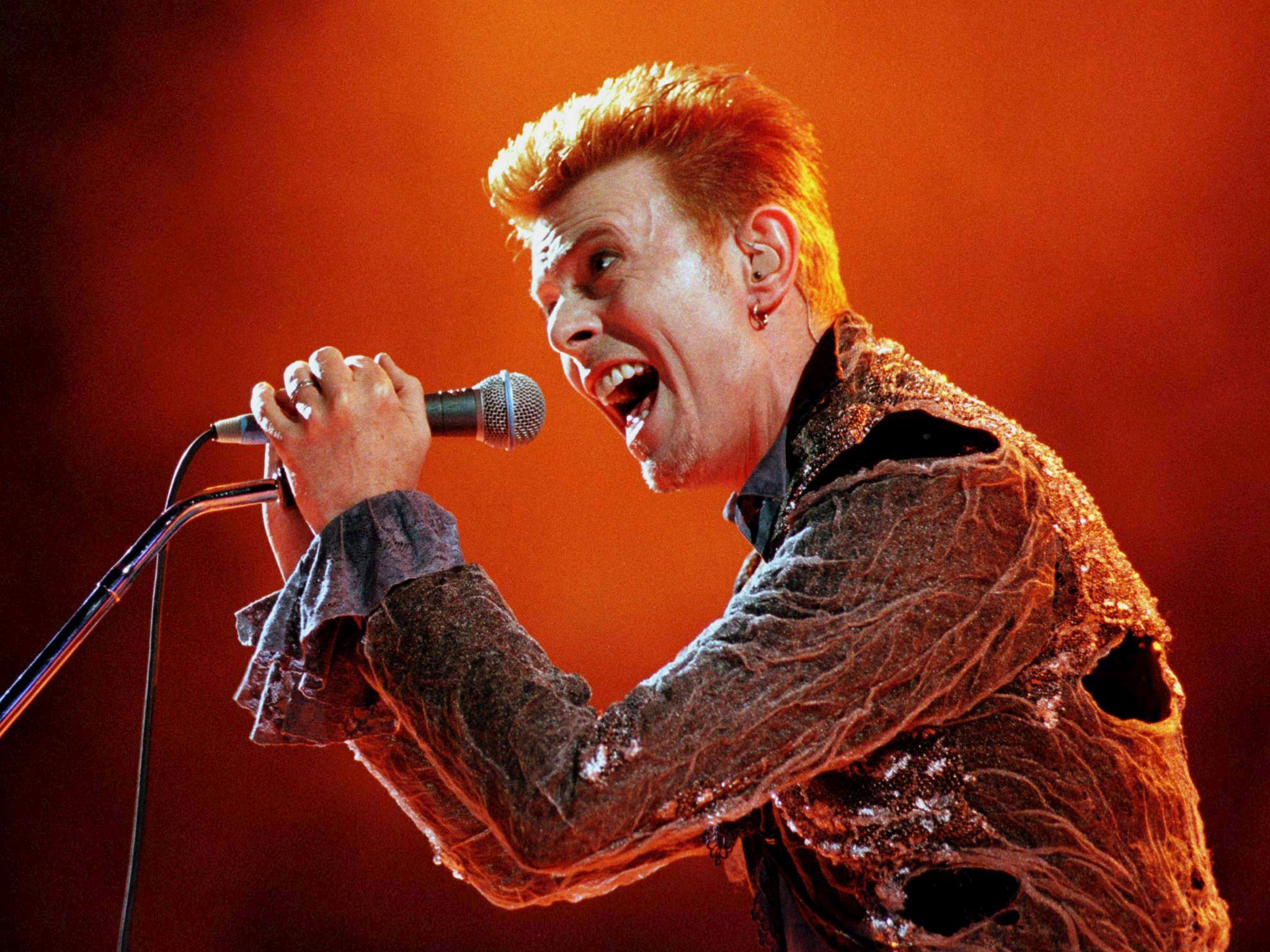david bowie low wallpaper - photo #23