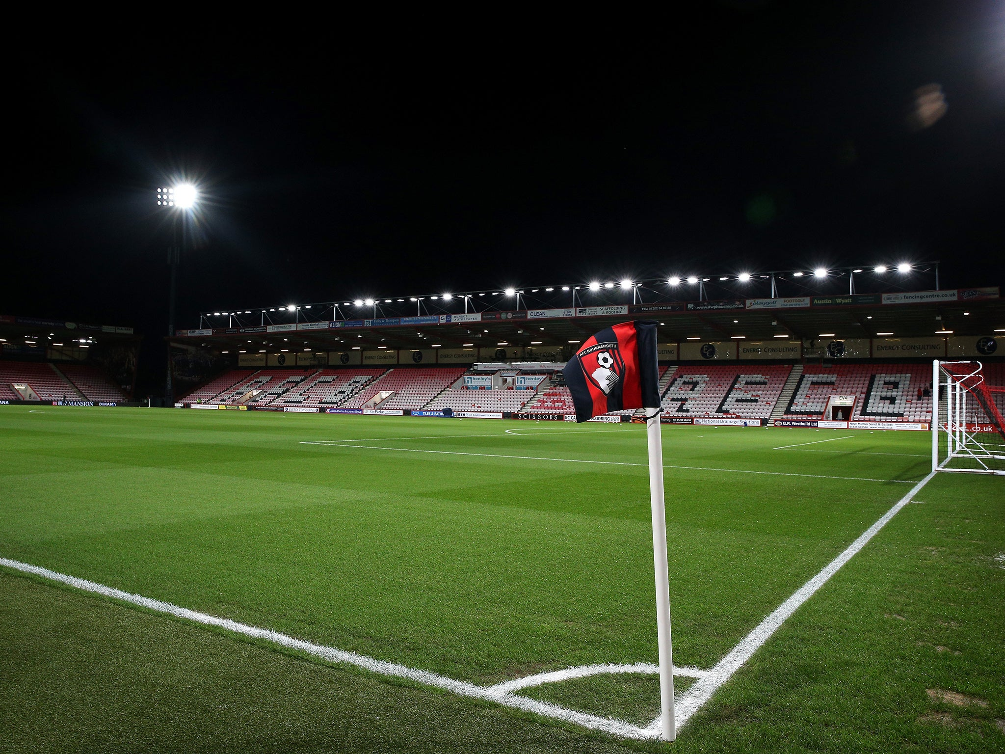Image result for vitality stadium images