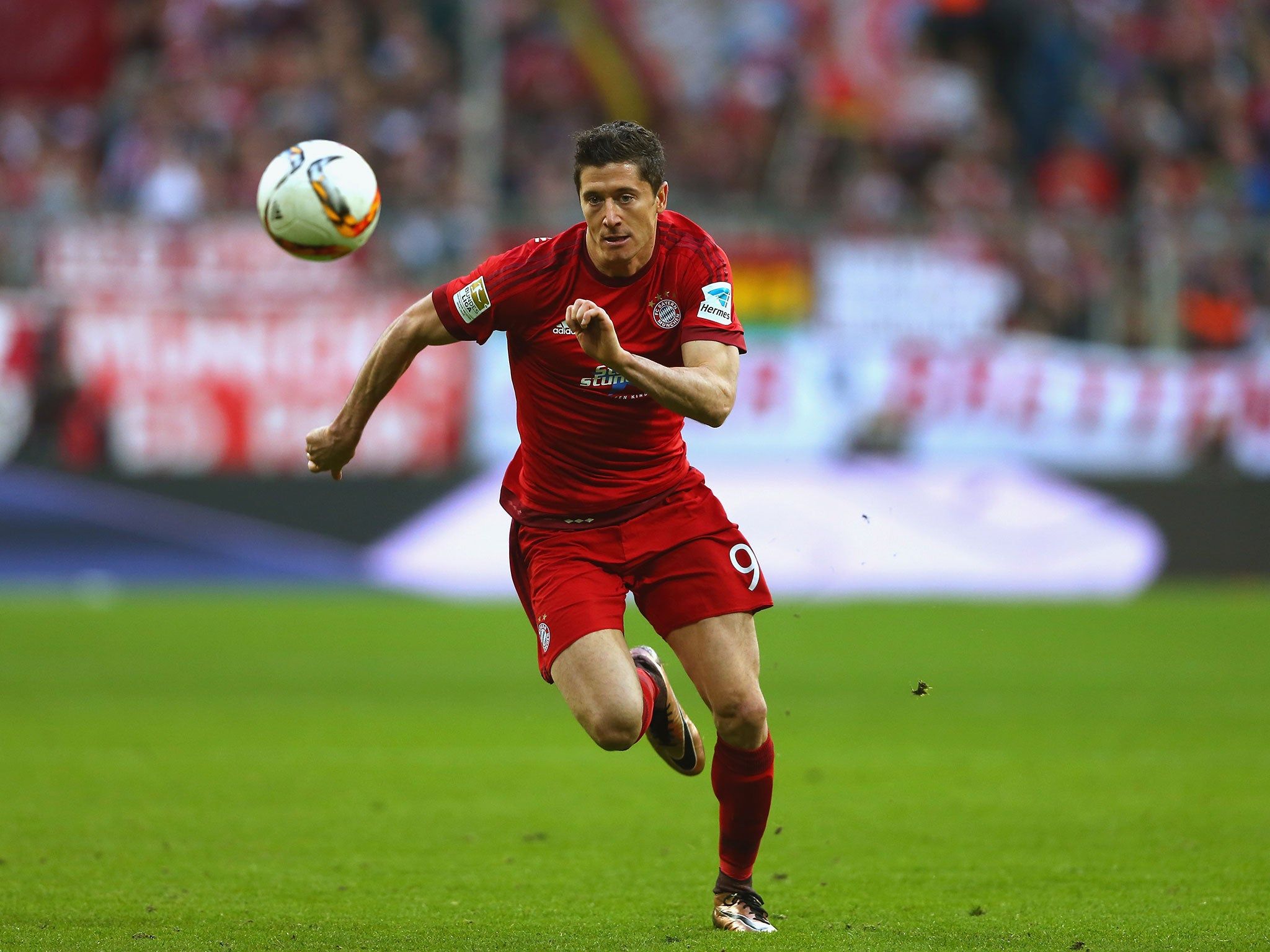robert lewandowski to snub manchester united chelsea and man city by leaving bayern for real. Black Bedroom Furniture Sets. Home Design Ideas