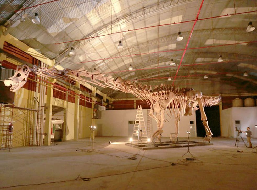A model of the huge Titanosaur was recreated after the discovery