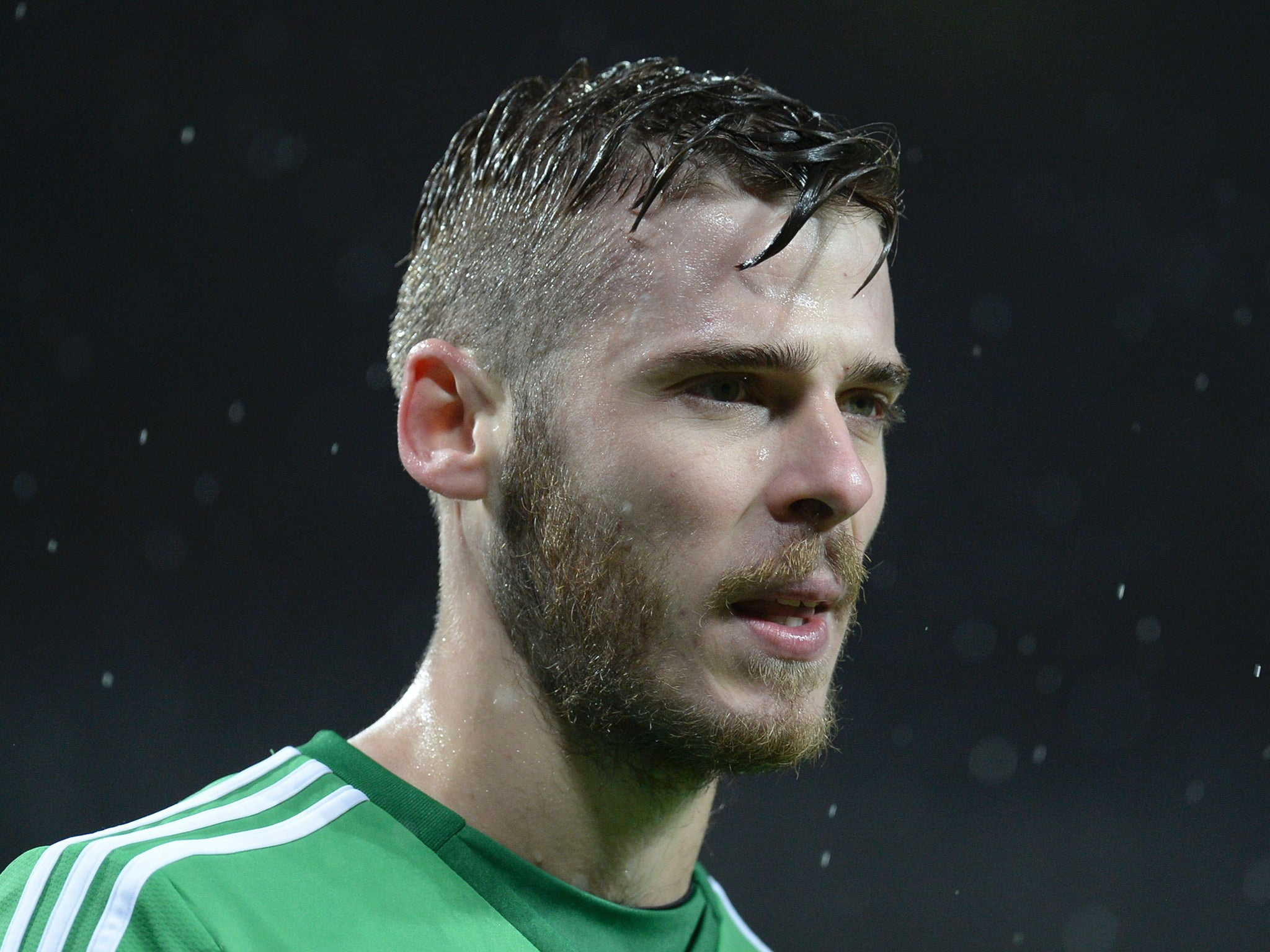 Real Madrid And Atletico Madrid Transfer Bans Provisionally - David de gea hairstyle 2014