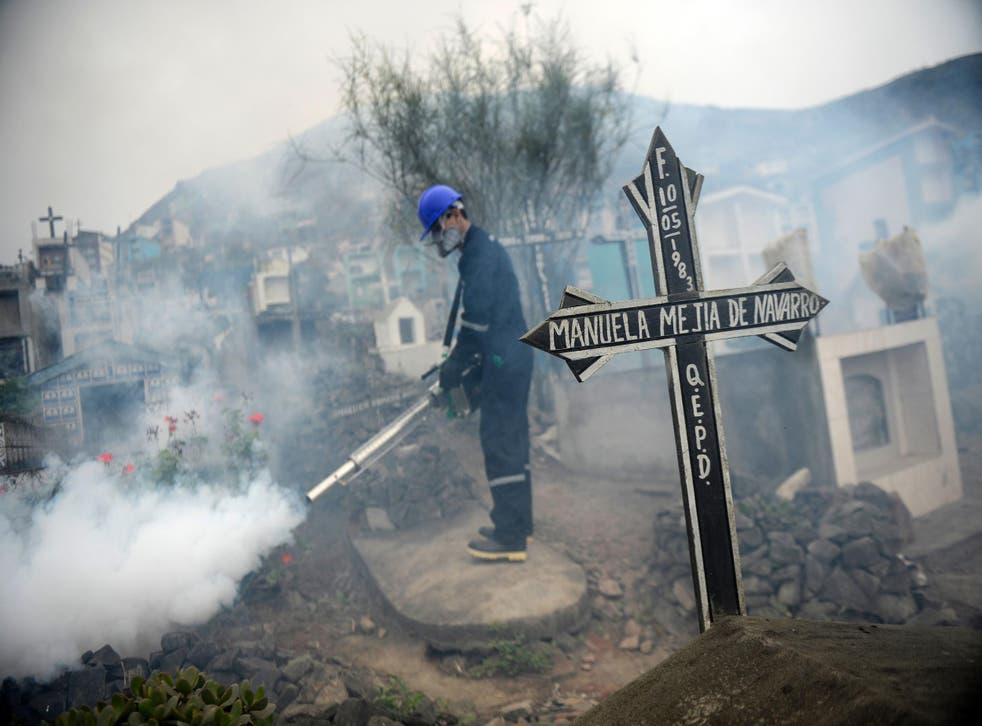 A specialist fumigates a cemetery in Lima, Peru, in an effort to stop the spread of the dangerous Zika virus