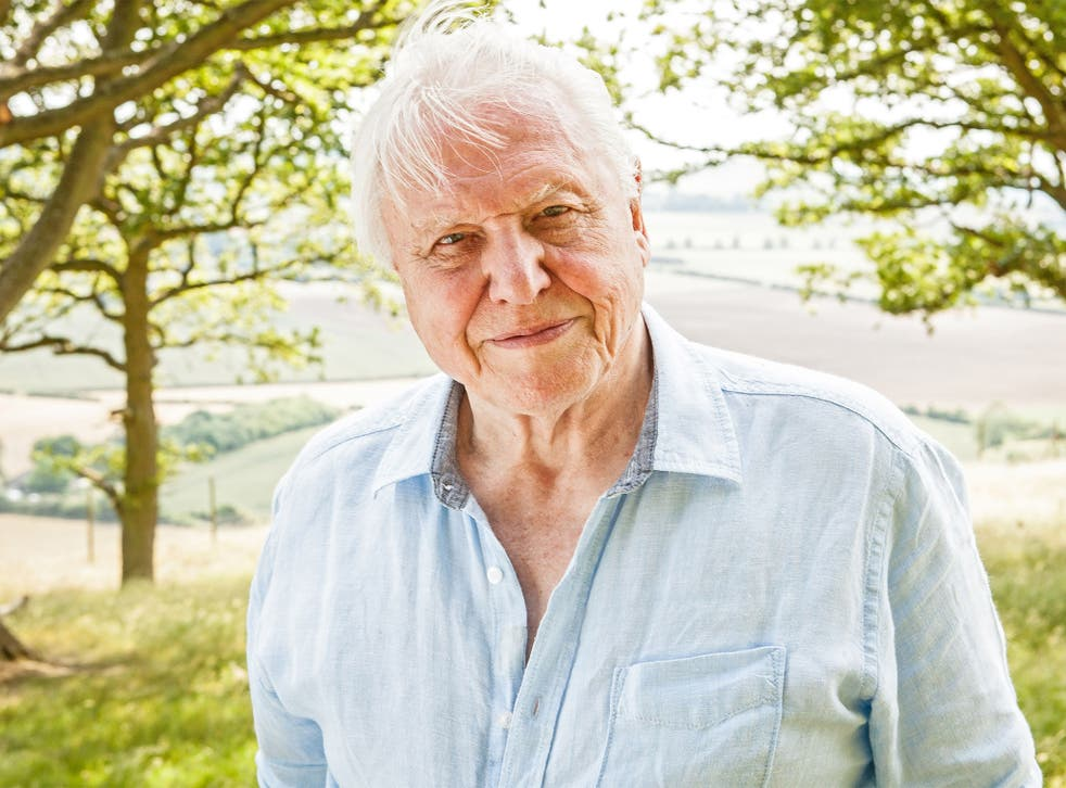 Giant in his field: Sir David's nature programming  has taken him all over the world