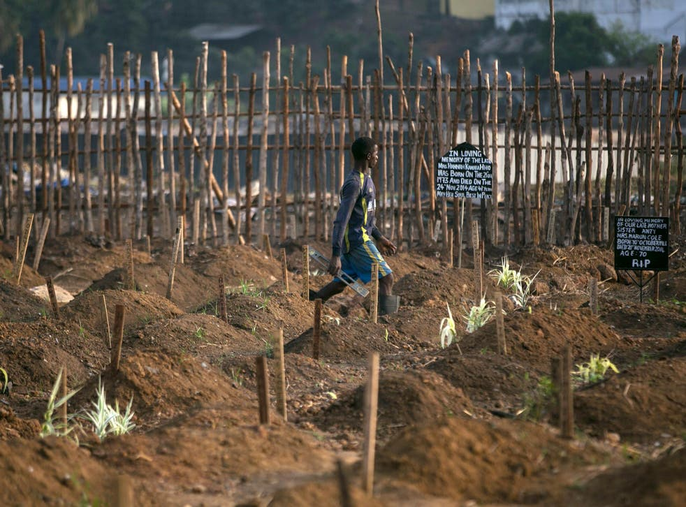 A grave digger walks past fresh graves at a cemetery in Freetown, Sierra Leone, during the Ebola outbreak in 2014