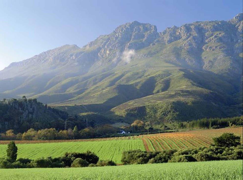 Rich pickings: visit local producers on a fair trade tour