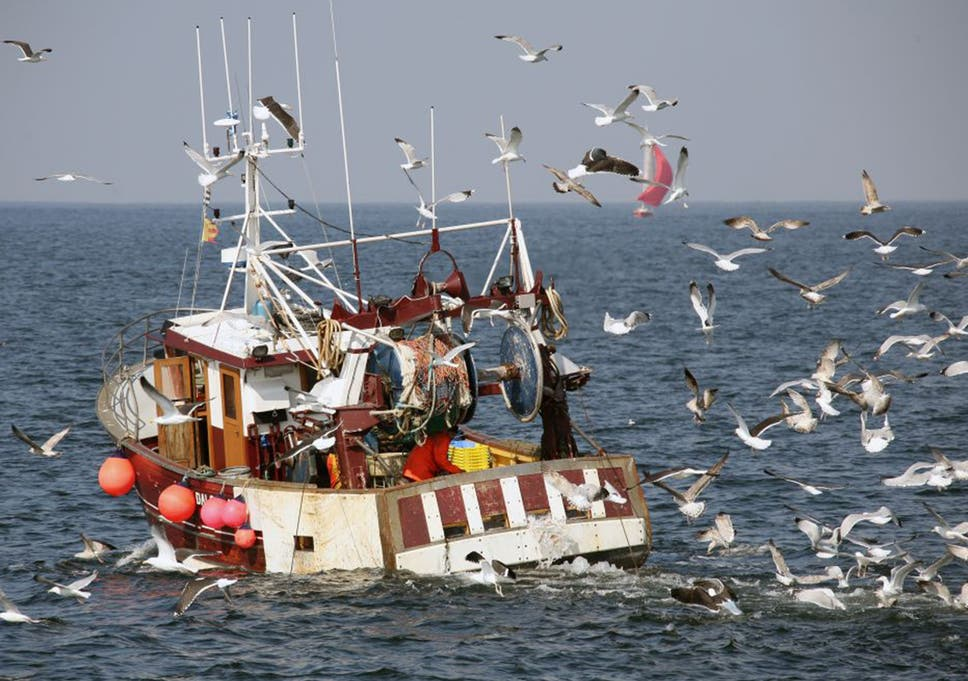 Uk Withdraws From 53 Year Old Common Fisheries Agreement Ahead Of