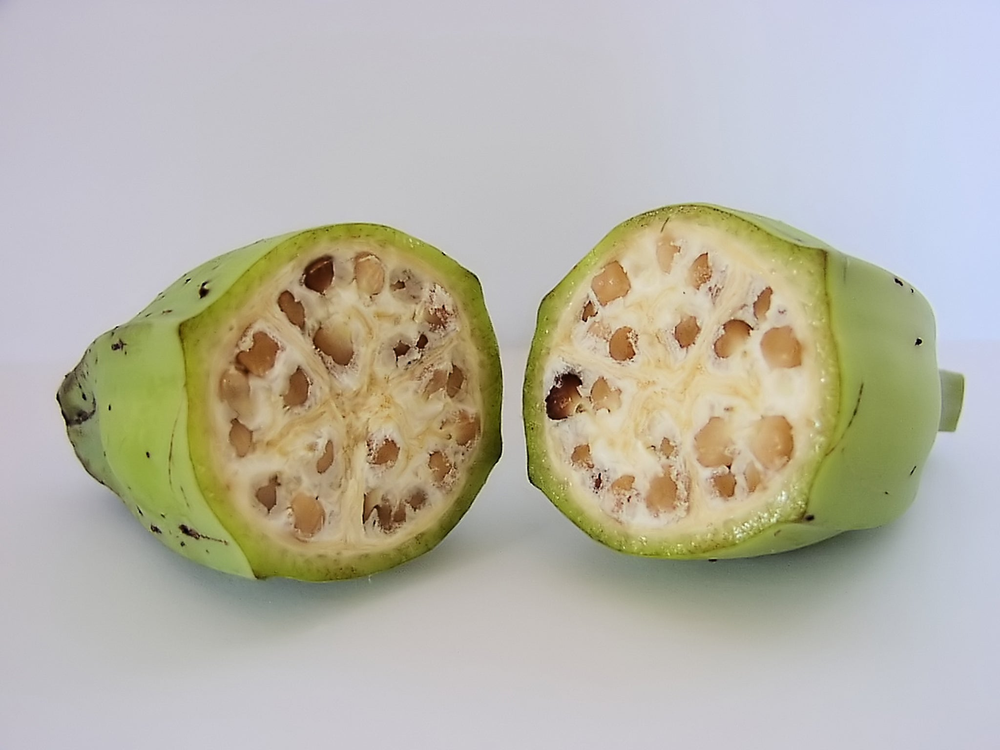 What fruits and ve ables looked like before humans starting