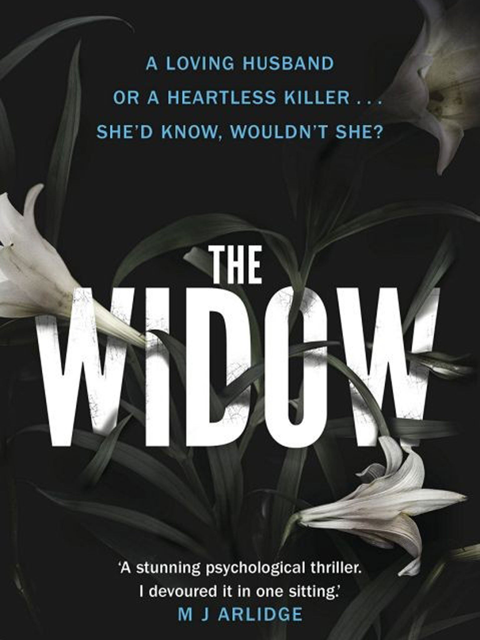 The widows guide to sex and dating a novel reviews