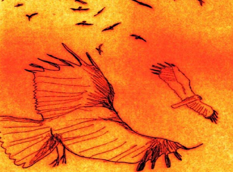 Sense of wonder: illustration from the graphic novel 'Thunder & Lightning'