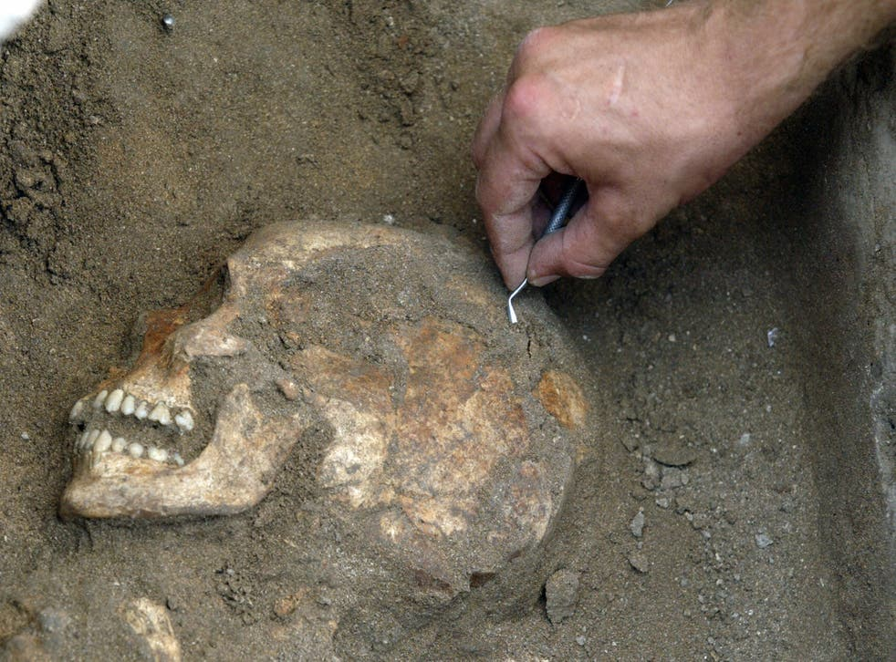 A British archaeologist digs up anicent human bones in Lebanon