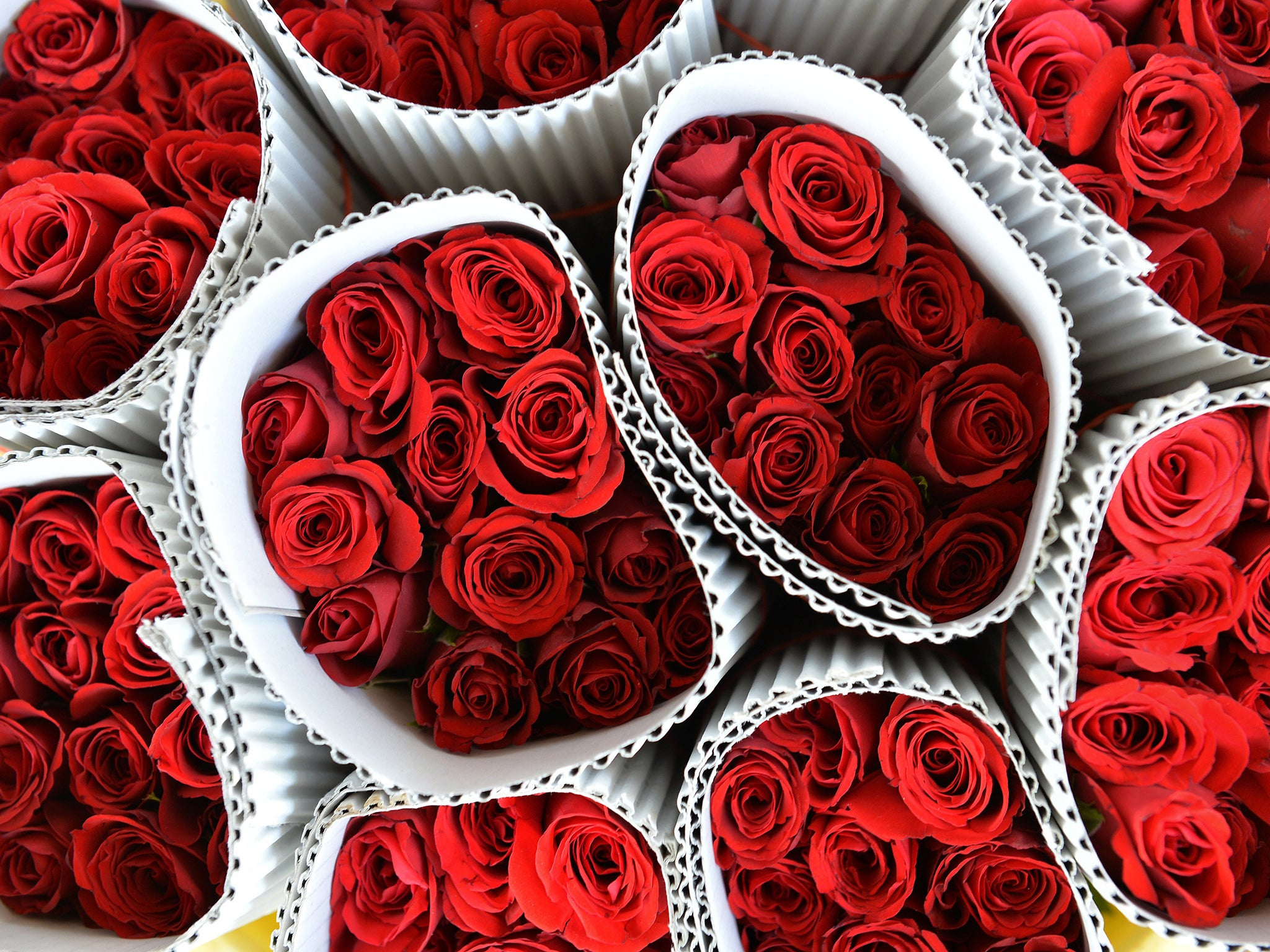 Valentines Day Roses Why Its Time To Skip The Lazy Man