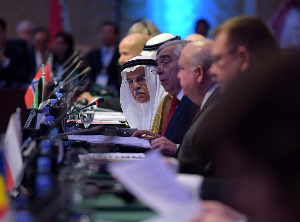 Saudi Oil Minister Ali al-Naimi (C) attends the 6th Ministerial Conference of the Carbon Sequestration Leadership Forum