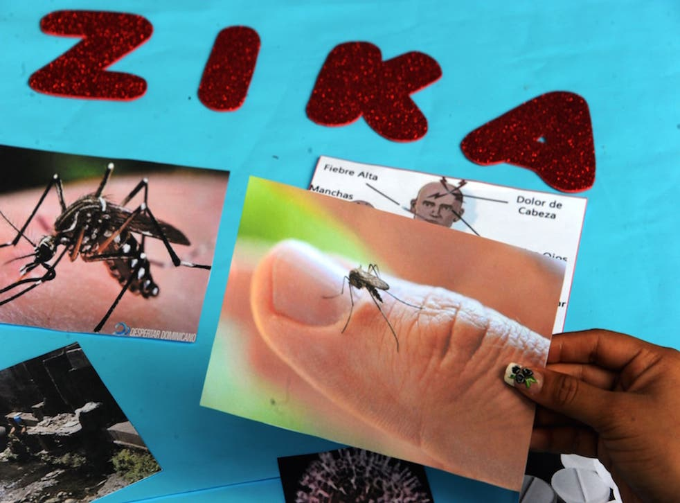 The World Health Organization said it supports testing genetically modified mosquitos to combat the Zika virus.