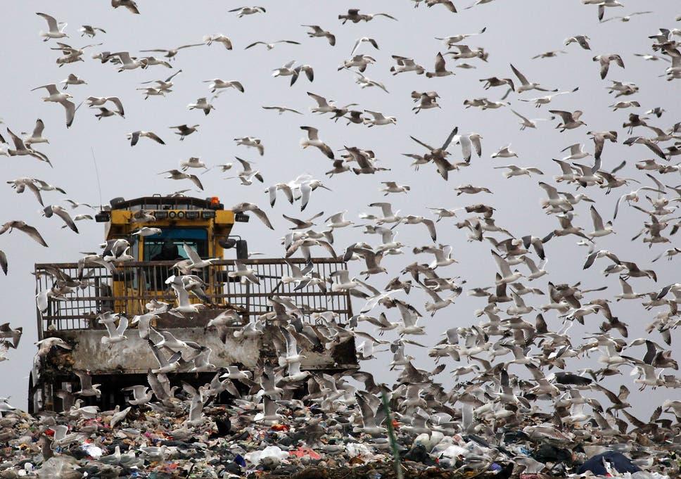 Landfill dumps across UK 'at risk of leaking hazardous chemicals