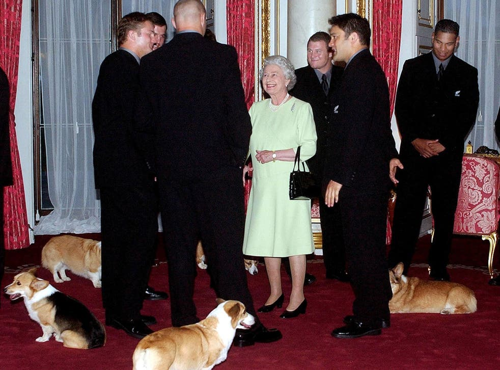 The Queen with her corgis in 2002