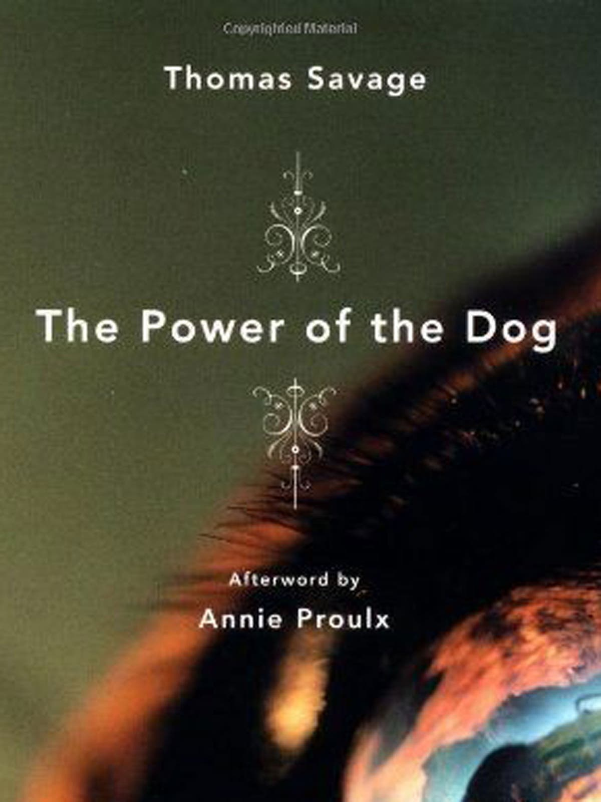 The Power of the Dog by Thomas Savage, book review: Masculinity under the  microscope in a tale with bite | The Independent | The Independent