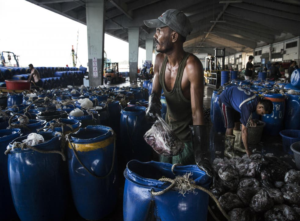 President Obama is trying to stem the tide of fish and other imports into the US that are tainted by slavery