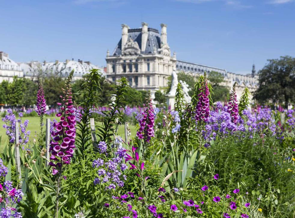 Flower power: Jardin des Tuileries, Paris