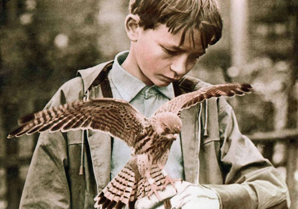 The real 'Kes': The Barry Hines story was based on his