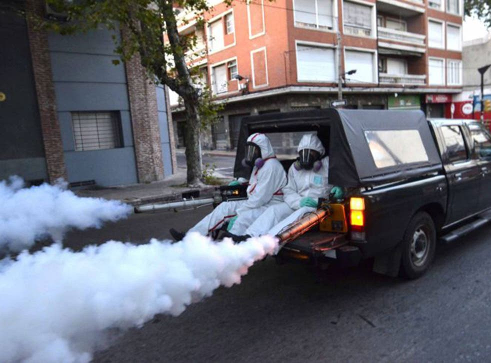 Health workers fumigating in Montevideo, Uruguay, last week to eradicate mosquitoes