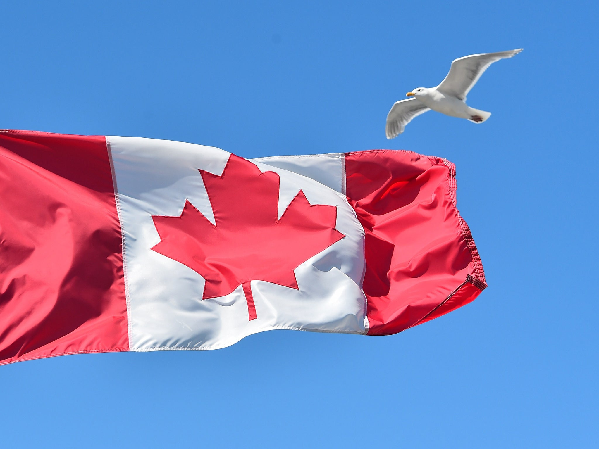6. Canada, Ireland (Republic of), Korea (Republic of, South), Luxembourg, Norway, Portugal, Switzerland