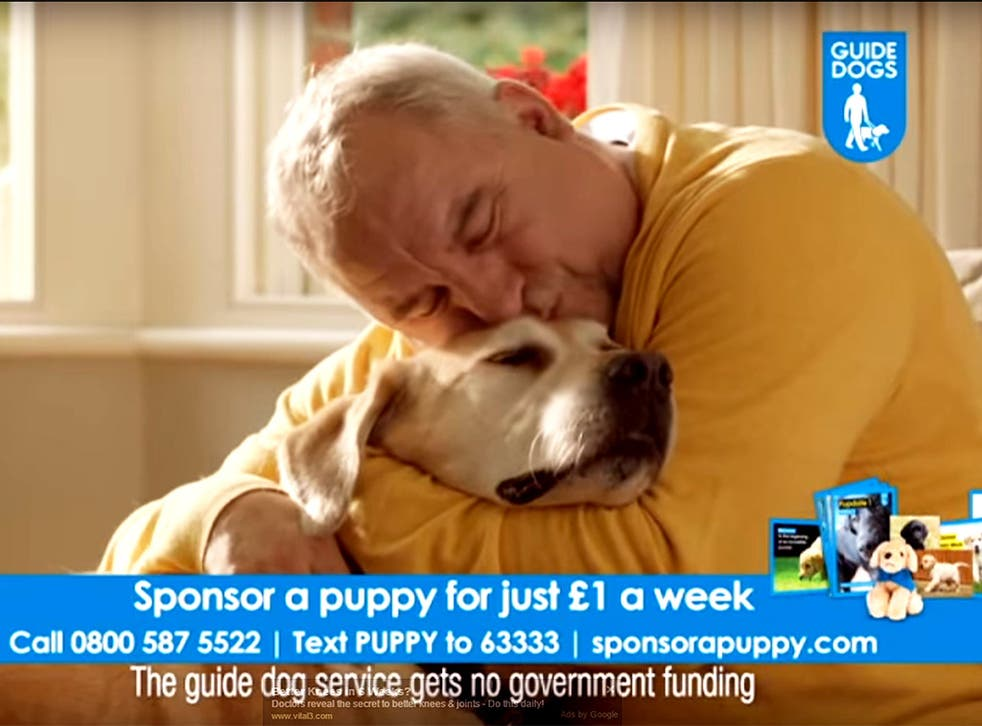 The Guide Dogs for the Blind Association had a sponsorship drive at Christmas that it said was aimed at adults