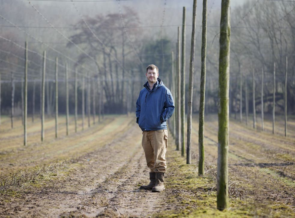Will Kirby in one of his fields freshly planted with hops