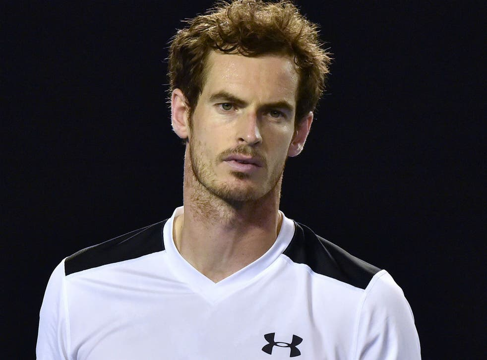 Andy Murray at the Australian Open 2016