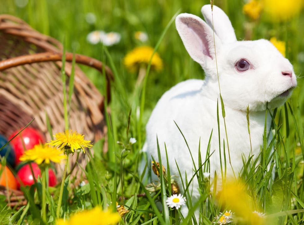 Easter is particularly early this year, falling on 27 March
