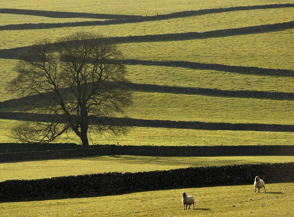 Greenfield sites are seen as 'more profitable' by developers