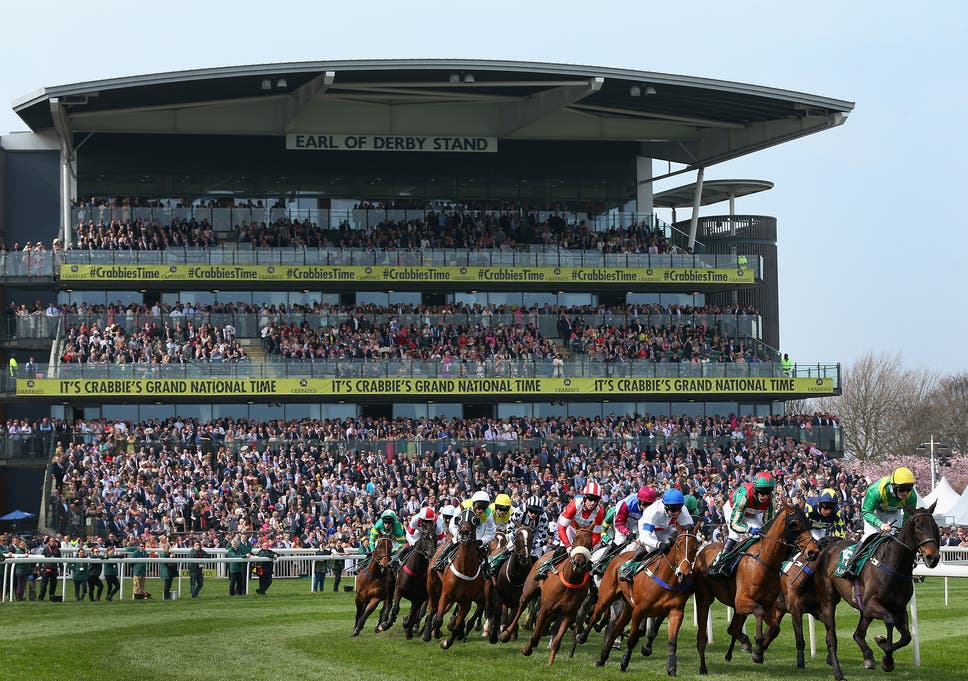 Horse-racing contributes billions to our economy - it would