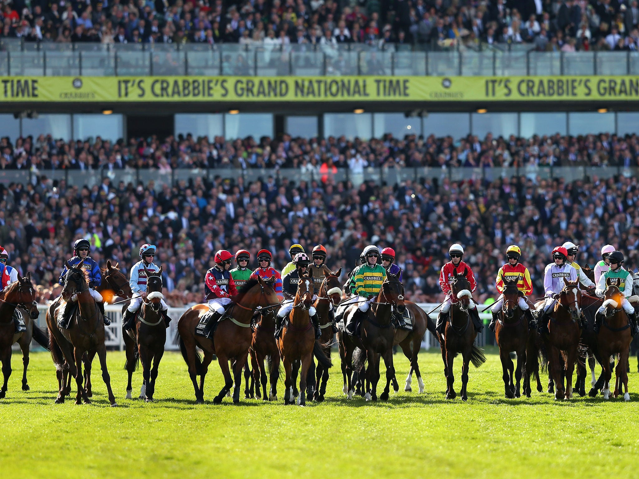 grand national guide