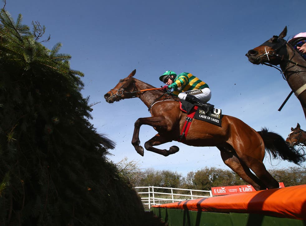 A view of the 2015 Grand National