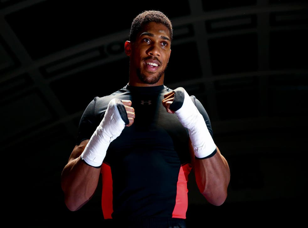 Anthony Joshua has contested just 32 rounds in his 15 pro fights so far