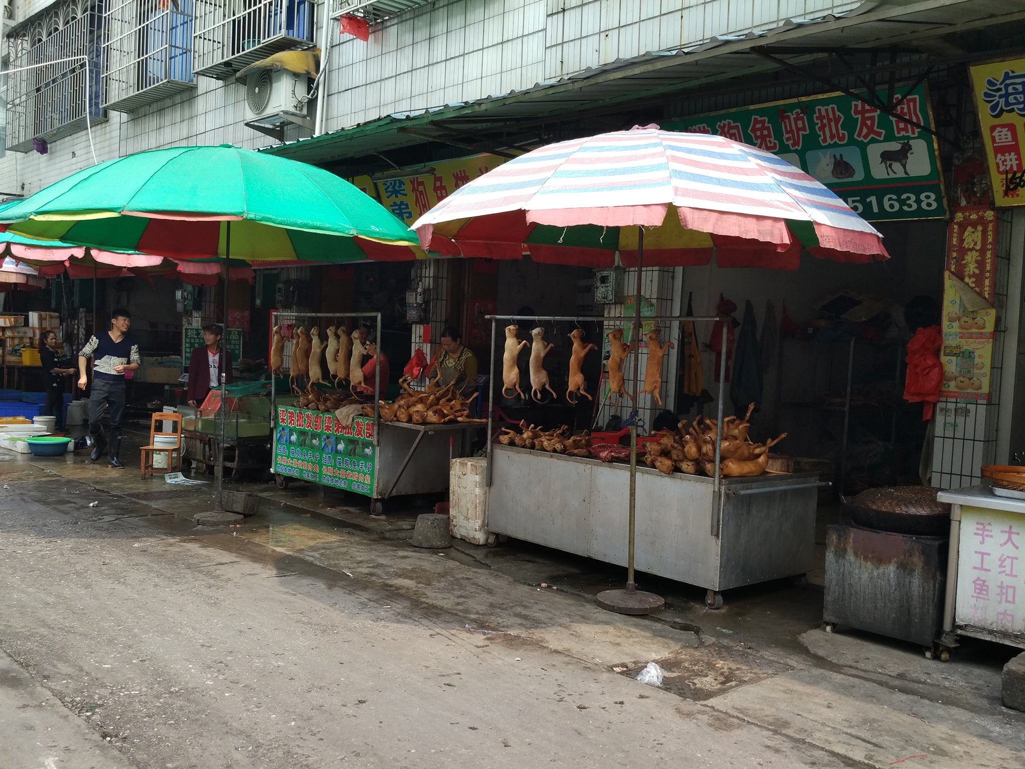 Dog meat market, Yulin