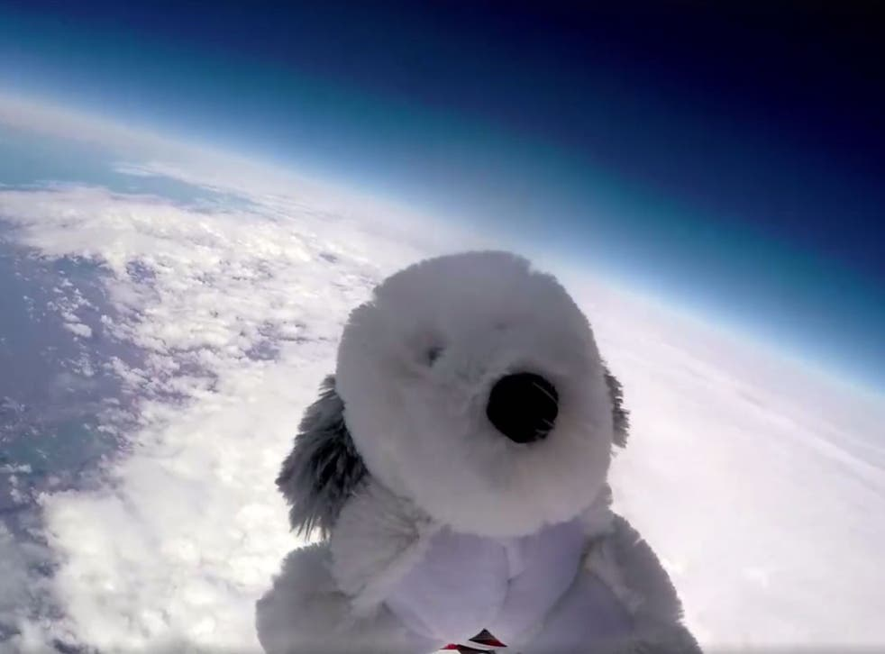 Sam the Dog soars above the Earth during his ill-fated flight