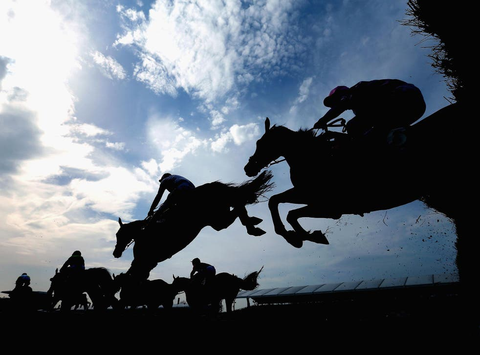 Since 2000, 42 horses have died at Aintree