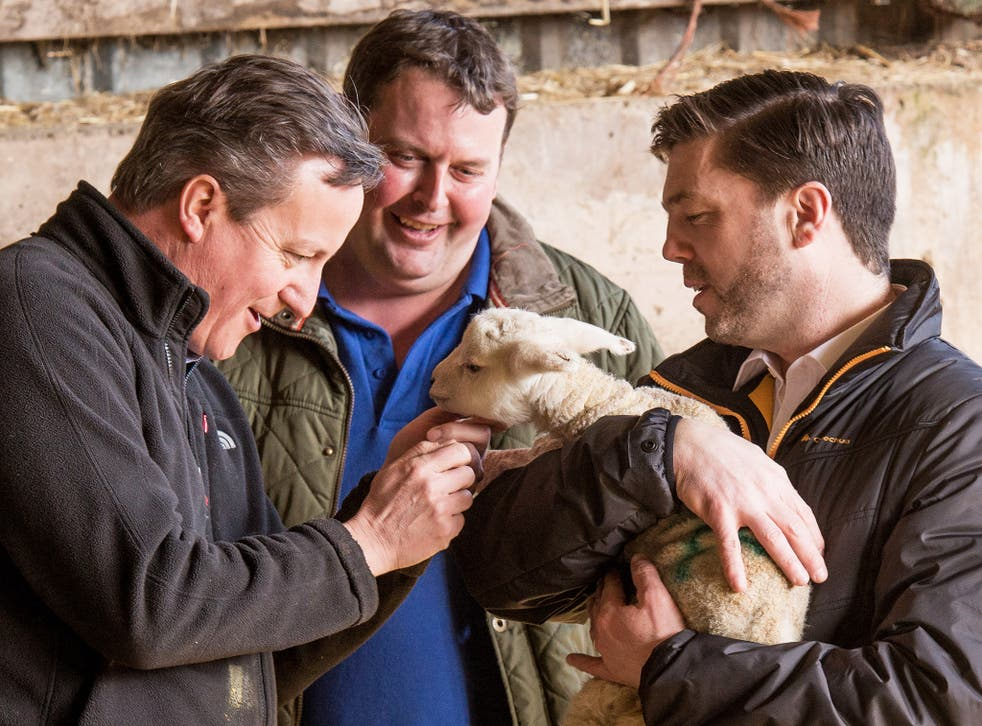 Stephen Crabb (right) visiting a farm with the Prime Minister, in Denbighshire, last month