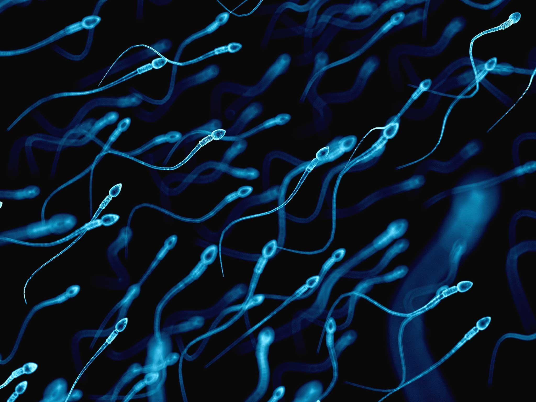 Groundbreaking fertilisation technique could allow gay couples to have babies with each other